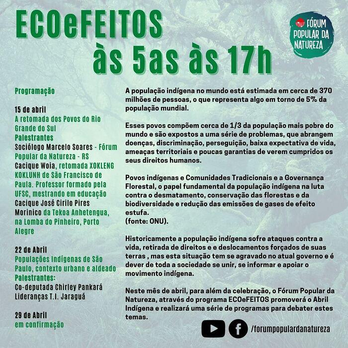 ecoefeitos programa (1)